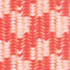 One Canoe Two - Tucker Prairie - Geometric Triangles in Coral