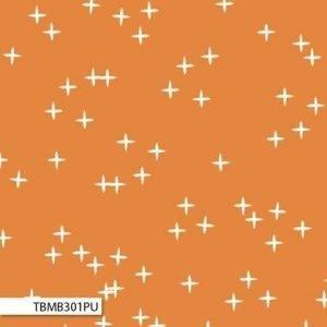 Birch - Mod Basics 3 - Wink Pumpkin