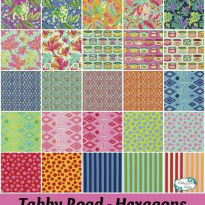 Tula Pink Tabby Road - Hexagons