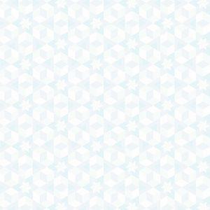 Andover - Alison Glass - Diving Board Starfish Mist 8638-L